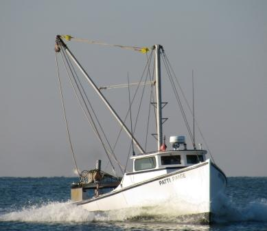 Chesapeake Bay Deadrise Oyster Boat