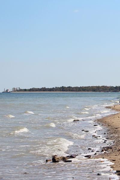 calverts cliffs beach