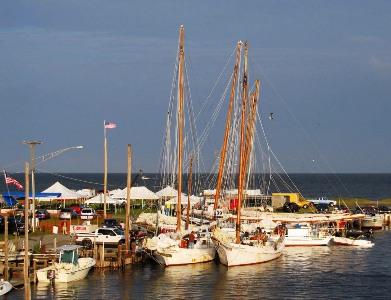 deal island skipjack races - festival