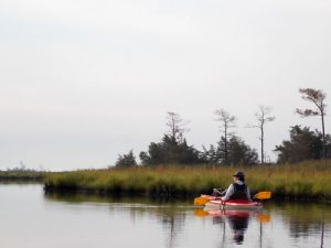 chesapeak bay kayaking