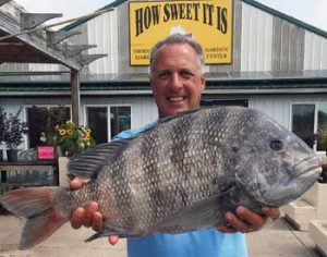 md state record sheepshead